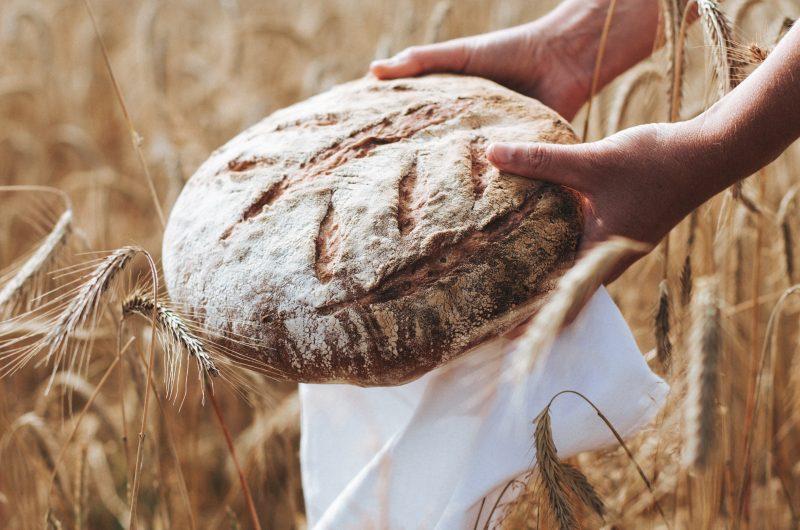 Pain à l'épeautre - Spelt flour Bread